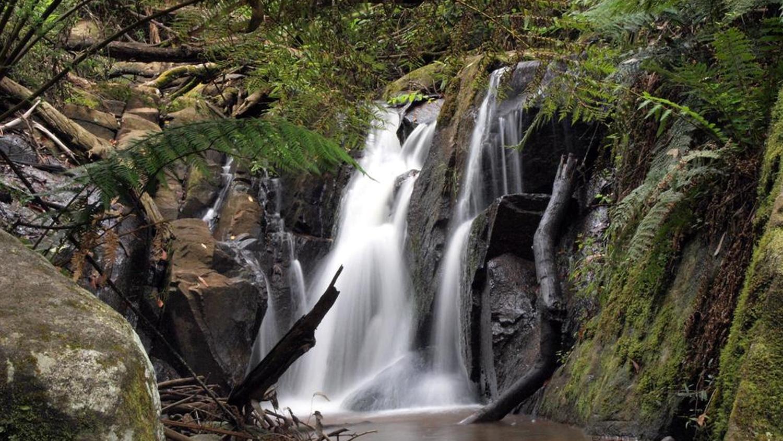 Olinda Falls