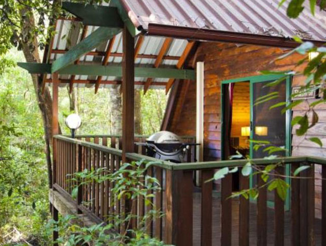 Welcome To Woodlands Rainforest Retreat